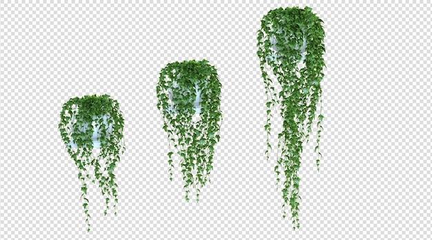교수형 식물 3d 렌더링
