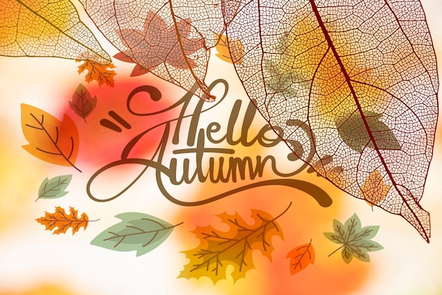 Hello autumn lettering with translucent leaves