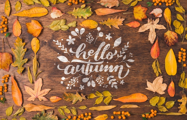 Hello autumn quote surrounded by dried leaves