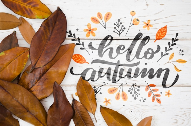 Hello autumn quote with brown leaves