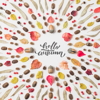 Hello autumn quote with dried leaves on white background