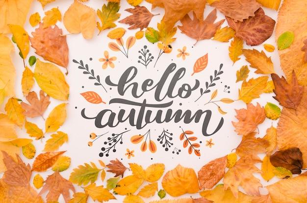 葉の束に囲まれたこんにちは秋