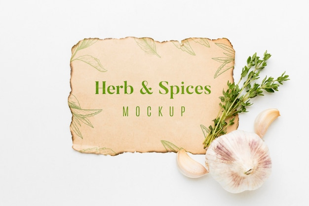 Herbs and spices mock-up with garlic