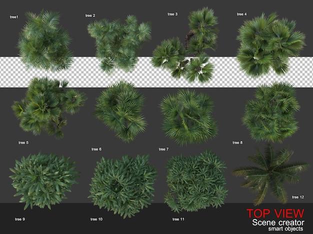 하이 앵글 카메라 나무와 관목