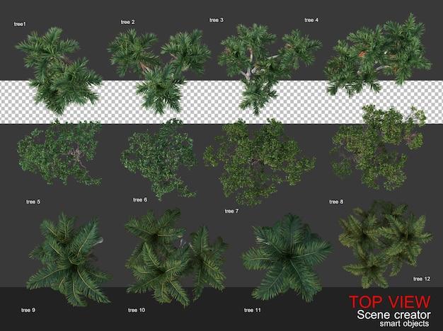 High angle camera trees and shrubs