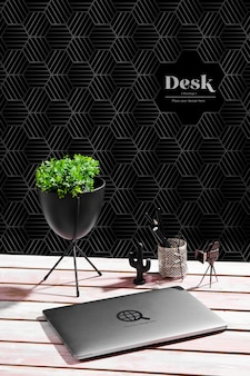 High angle of desk with plant and laptop