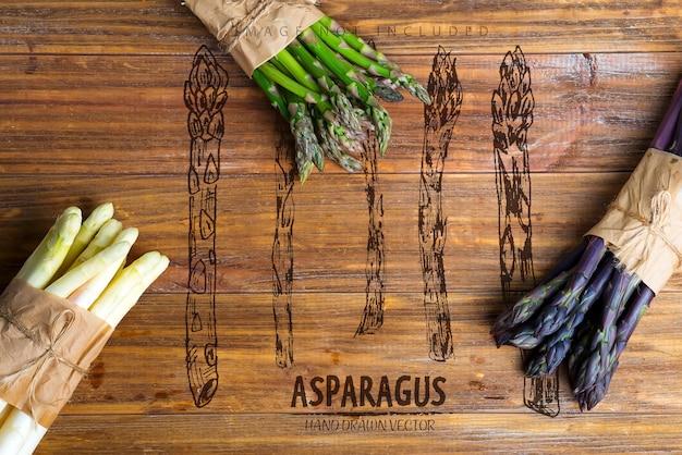 Домашние сырые органические фиолетовые зеленые и белые копья спарагуса, готовые для приготовления здоровой вегетарианской диеты, копия пространства, веганская концепция