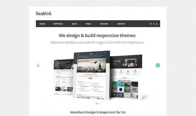 Морских птиц - homepage html5 шаблон psd