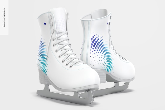 아이스 스케이트 모형, 왼쪽보기