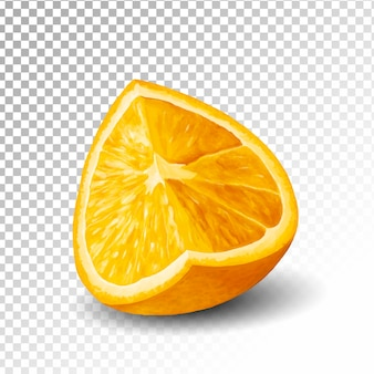 Illustration half of orange transparent