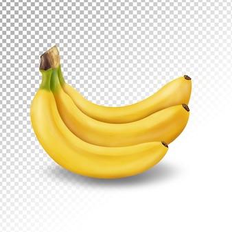 分離された透明なバナナのイラスト