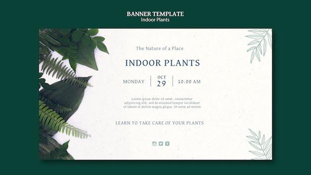 Indoor plants banner template