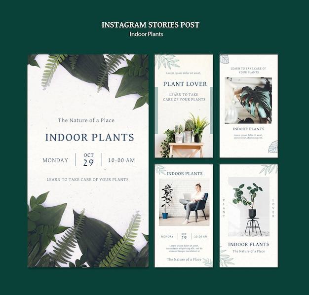Истории из социальных сетей о комнатных растениях
