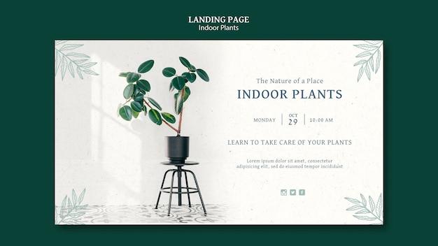 Indoor plants web template