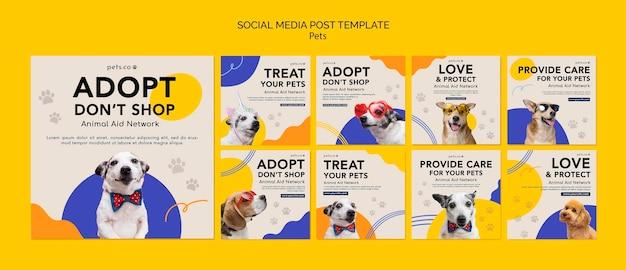 Raccolta di post su instagram per l'adozione di animali domestici con il cane Psd Gratuite