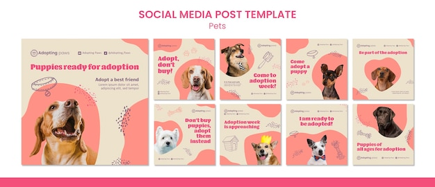 Instagram posts collection for pet adoption with dog Premium Psd