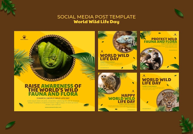Instagram posts collection for world wildlife day with animals
