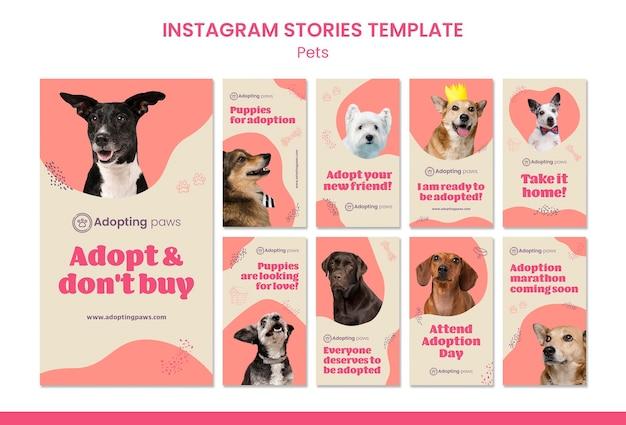 Коллекция историй из инстаграм для усыновления домашних животных с собакой Premium Psd