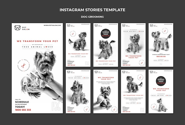 Instagram stories pack for pet grooming company