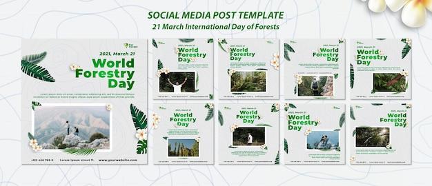 森林の国際デーソーシャルメディア投稿
