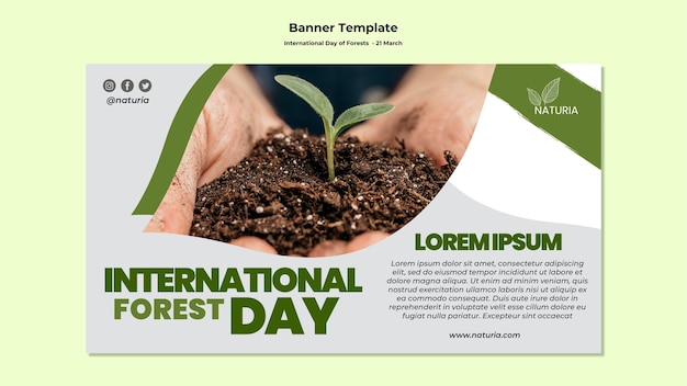 International forest day banner