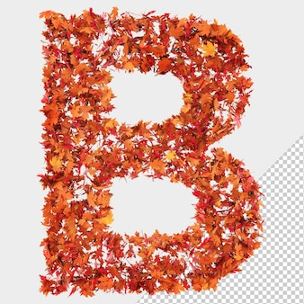 Isolated autumn leaves 3d letter b