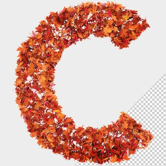 Isolated autumn leaves 3d letter c