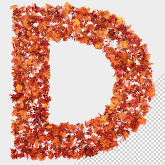 Isolated autumn leaves 3d letter d
