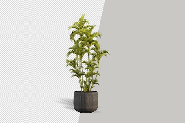 孤立したサボテンは鉢植えの植物の等角投影正面図3dシーンクリエーターをレンダリングします