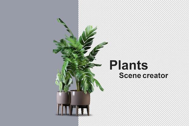갈색 냄비에 고립 된 신선한 식물