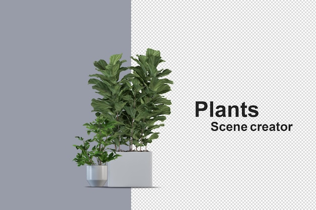 콘크리트 상자에 고립 된 신선한 식물