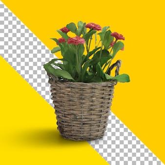 木製のバスケットに孤立した新鮮な植物