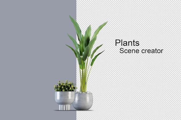 Изолированные свежие растения на деревянной корзине