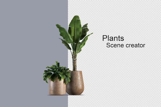 나무 바구니에 고립 된 신선한 식물