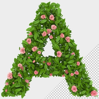 Isolated green leaves and roses 3d letter a