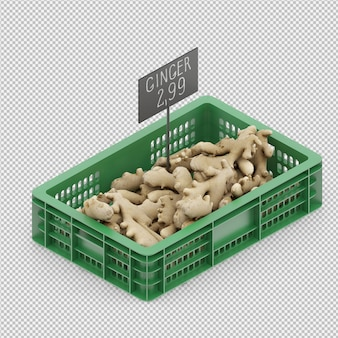 Isometric ginger 3d render