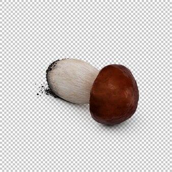 Изометрический гриб