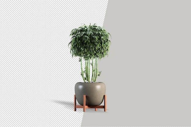 等尺性植物の 3 d レンダリング