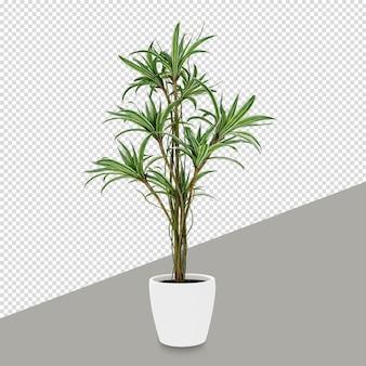 Изометрические растения в 3d-рендеринге изолированные