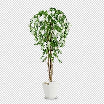 3dレンダリングの等尺性植物