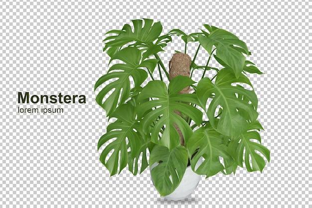Изометрические растения в 3d-рендеринге