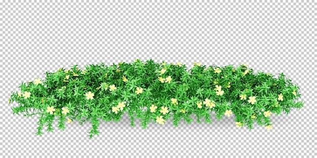 3 dレンダリングでの等尺性植物