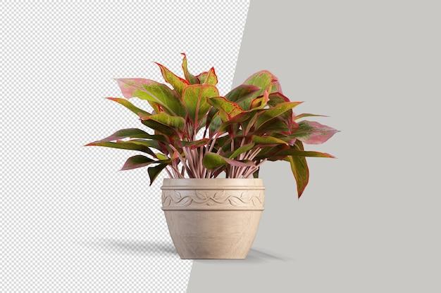 ポット 3 d レンダリングで等尺性植物