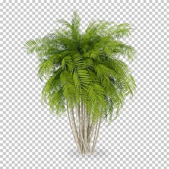 Isometric plant in pot 3d rendering