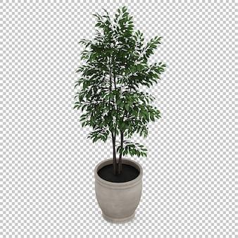 Isometric Plant