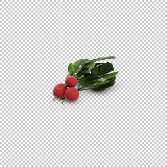Isometric radishes