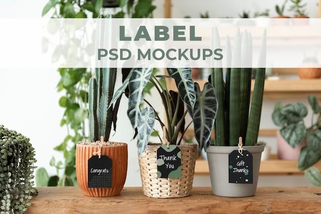 Label mockups psd on plants in a florist shop