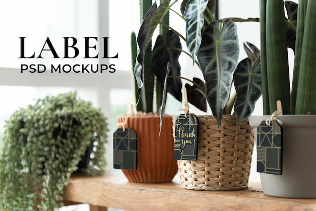 Label mockups psd on plants in a florist shop Free Psd