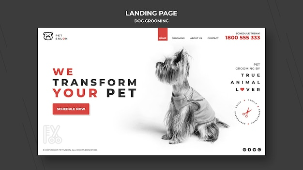 Landing page for pet grooming company