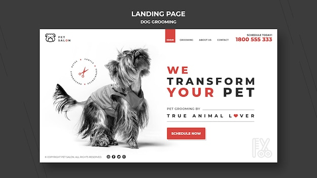 Landing page template for pet grooming company